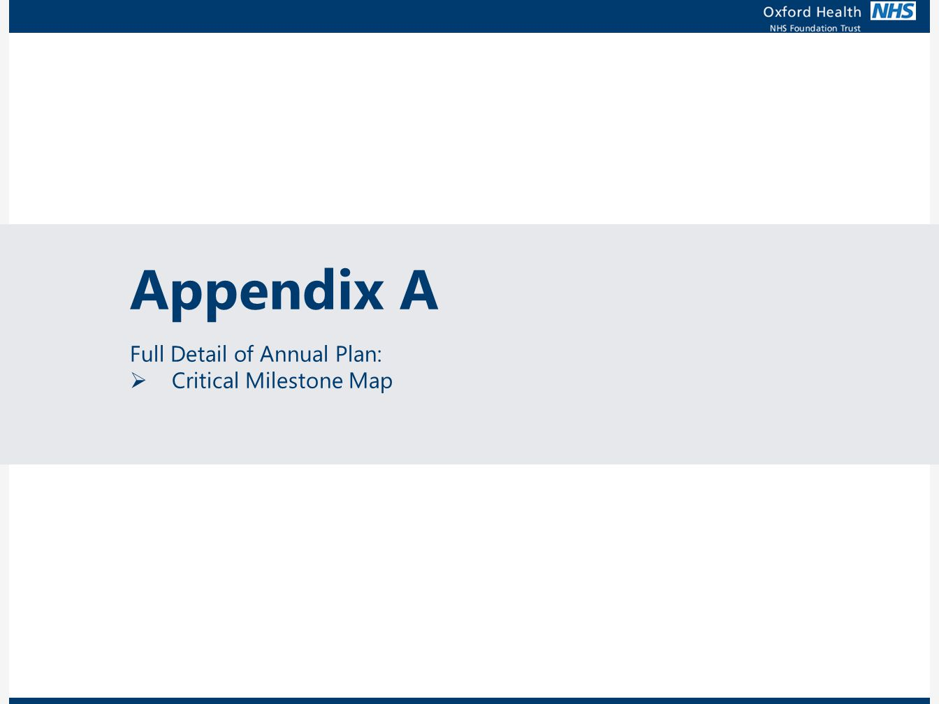 Appendix A Full Detail of Annual Plan: Critical Milestone Map