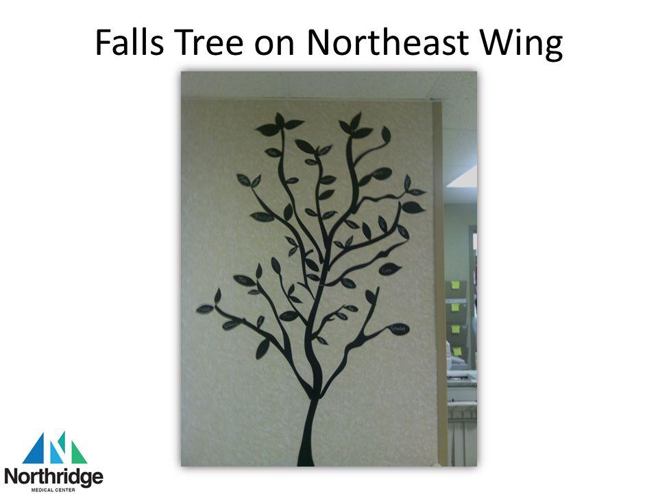 Falls Tree on Northeast Wing