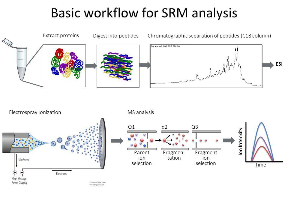Basic workflow for SRM analysis