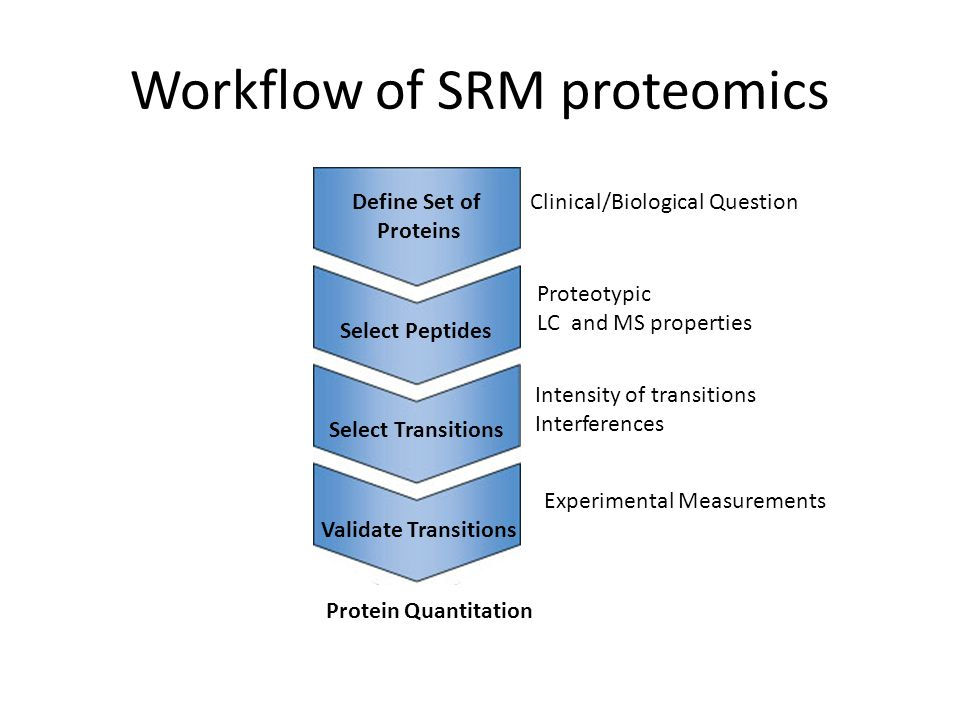 Workflow of SRM proteomics