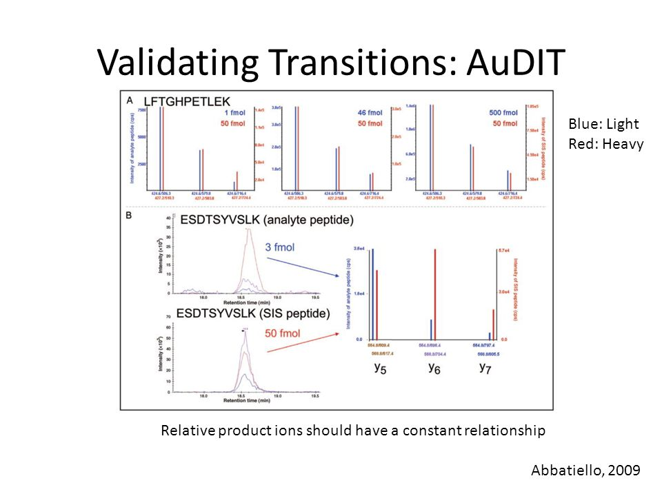 Validating Transitions: AuDIT