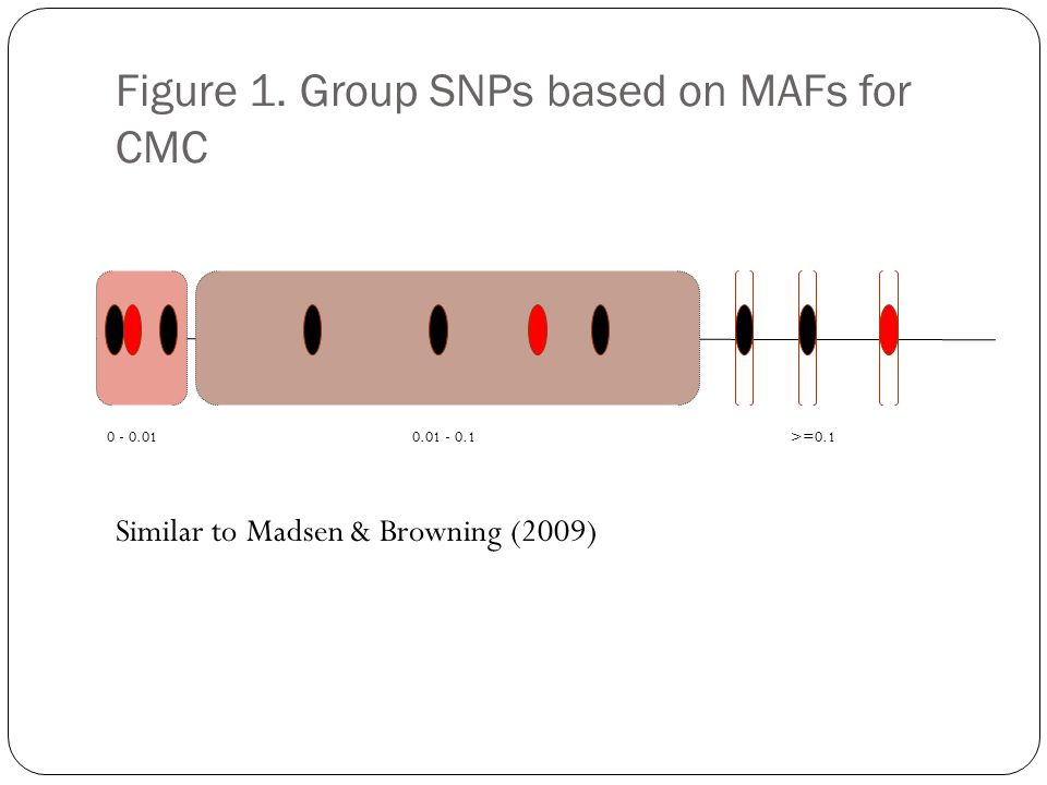 Figure 1. Group SNPs based on MAFs for CMC