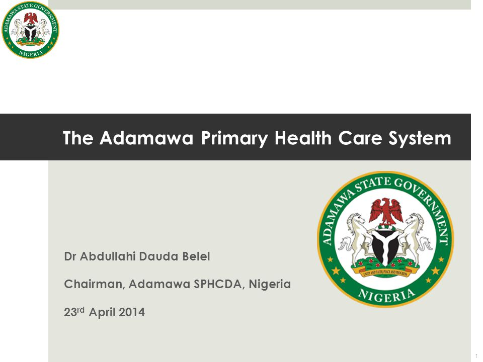 The Adamawa Primary Health Care System