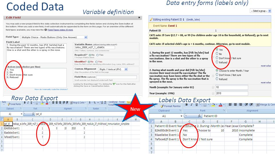 Coded Data Data entry forms (labels only) Variable definition