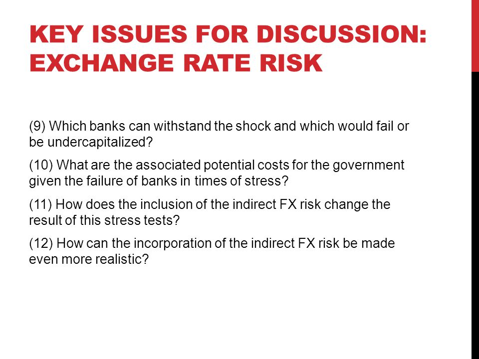 Key issues for discussion: exchange rate risk