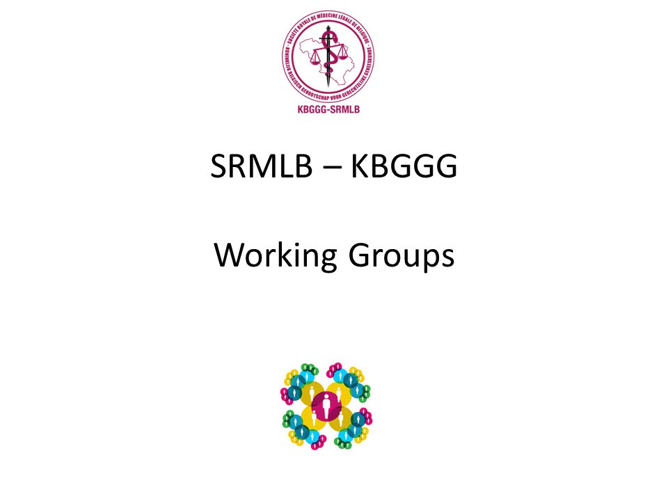 SRMLB – KBGGG Working Groups