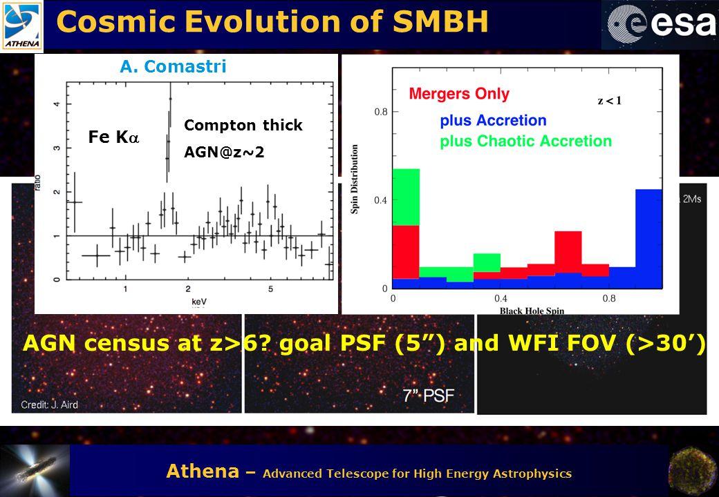 Cosmic Evolution of SMBH