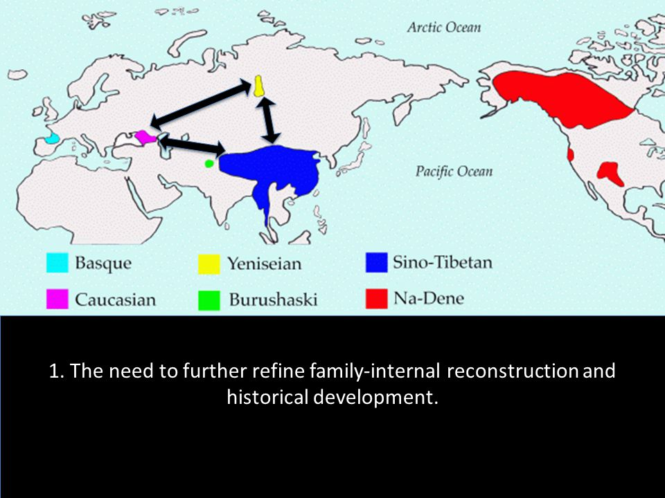 1. The need to further refine family-internal reconstruction and historical development.