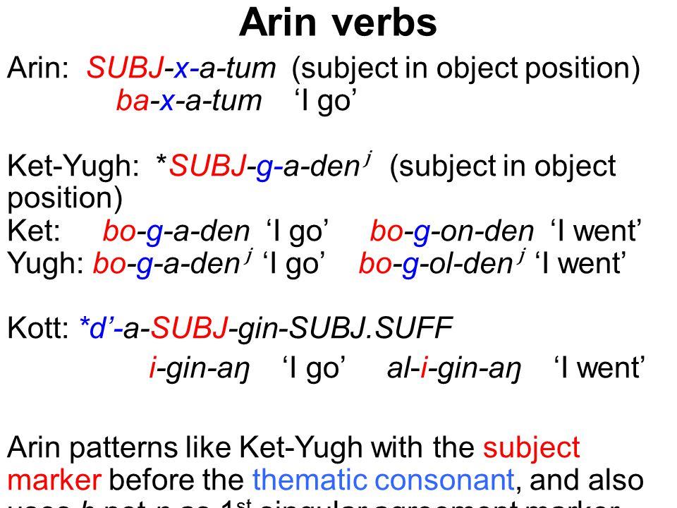 Arin verbs