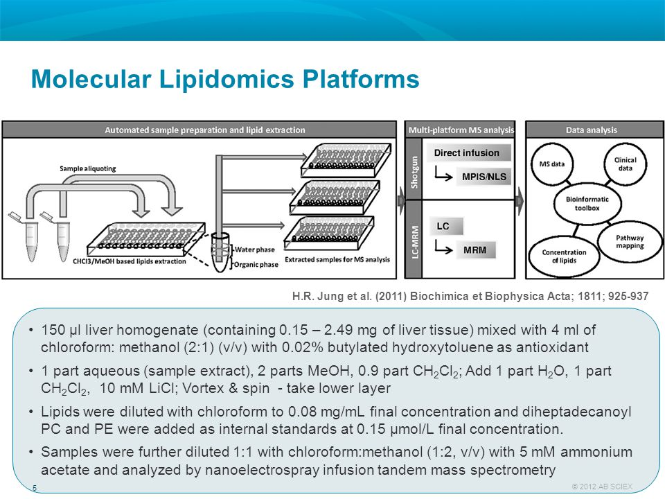 Molecular Lipidomics Platforms