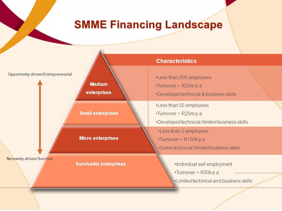 SMME Financing Landscape
