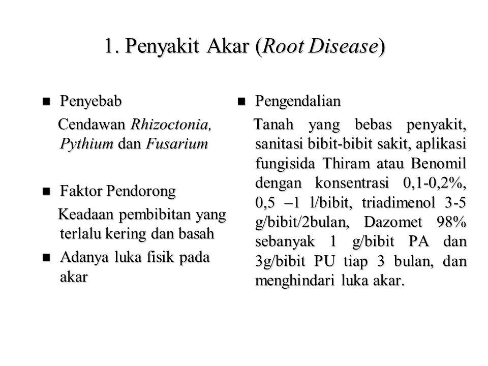 1. Penyakit Akar (Root Disease)