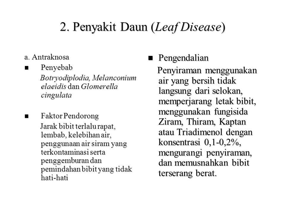 2. Penyakit Daun (Leaf Disease)