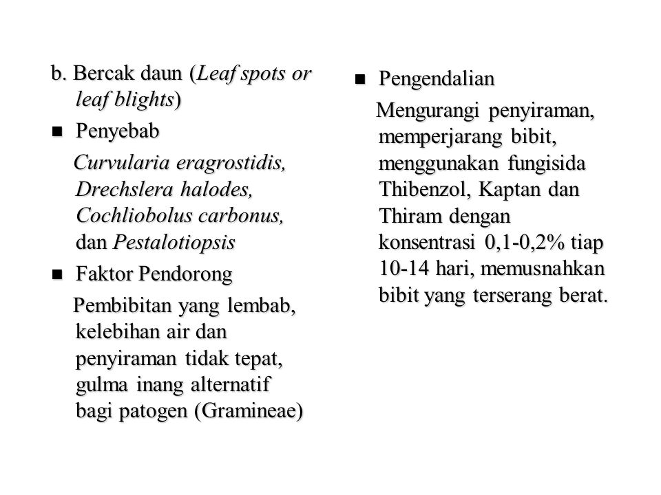 b. Bercak daun (Leaf spots or leaf blights)