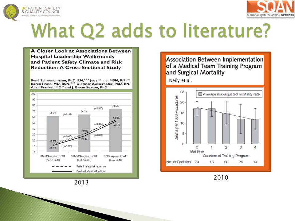 What Q2 adds to literature