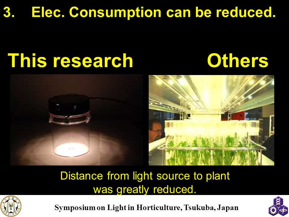 Distance from light source to plant was greatly reduced.