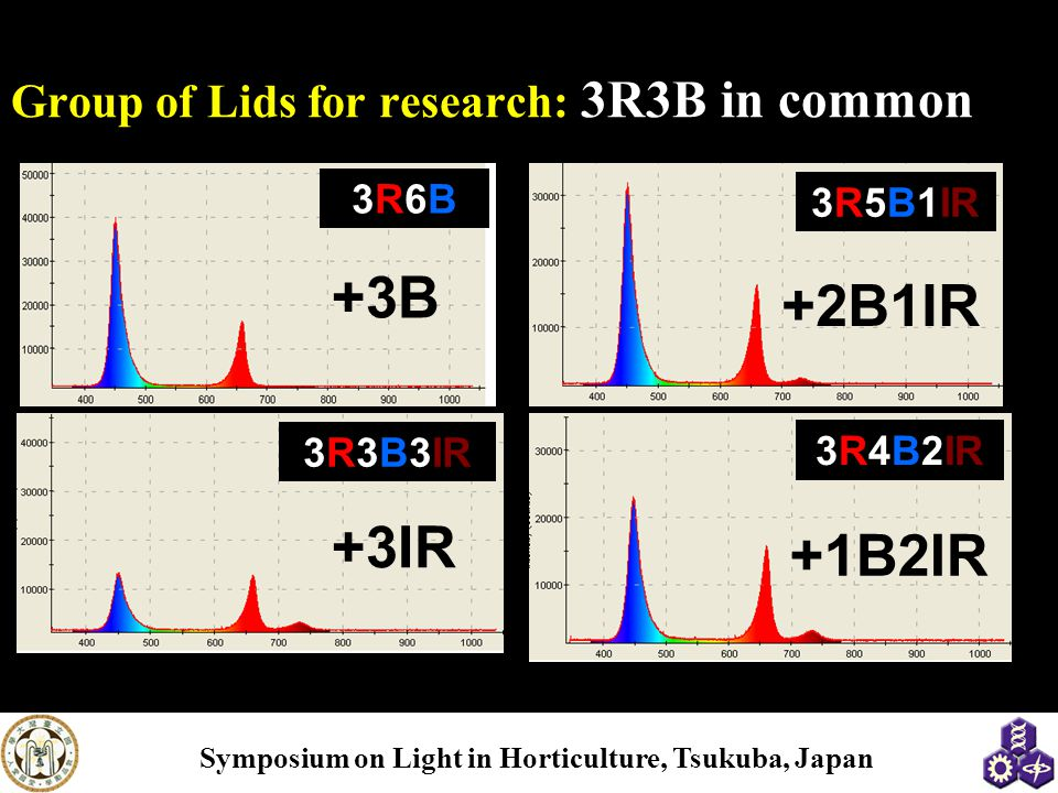 Group of Lids for research: 3R3B in common