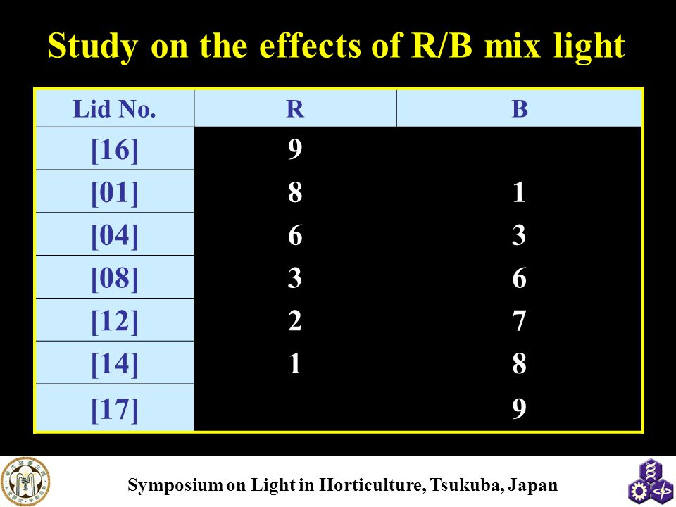 Study on the effects of R/B mix light