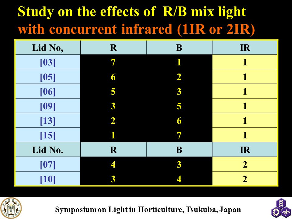 Study on the effects of R/B mix light with concurrent infrared (1IR or 2IR)