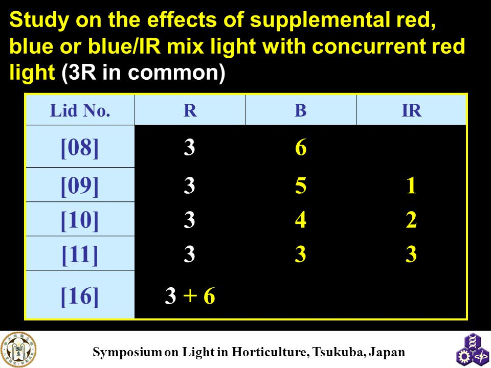 Study on the effects of supplemental red, blue or blue/IR mix light with concurrent red light (3R in common)