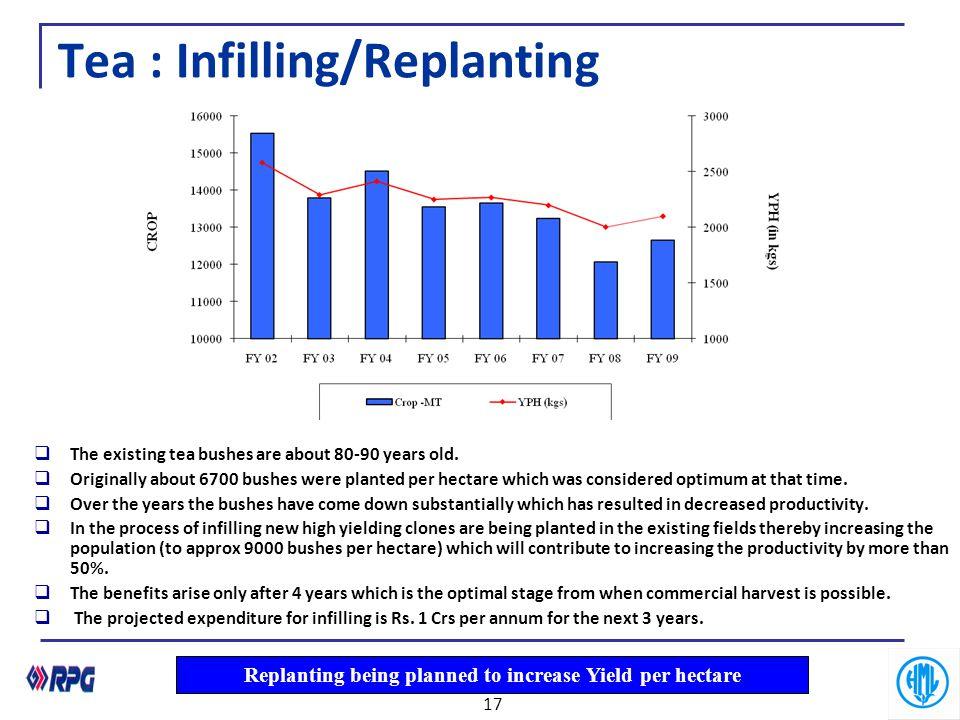 Tea : Infilling/Replanting