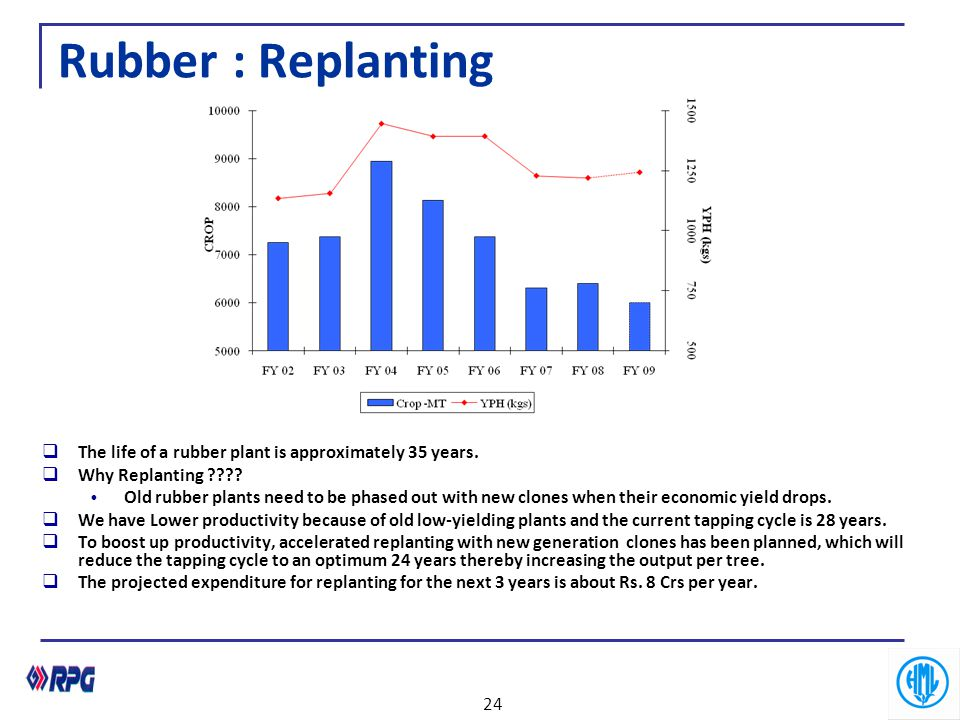 Rubber : Replanting The life of a rubber plant is approximately 35 years. Why Replanting