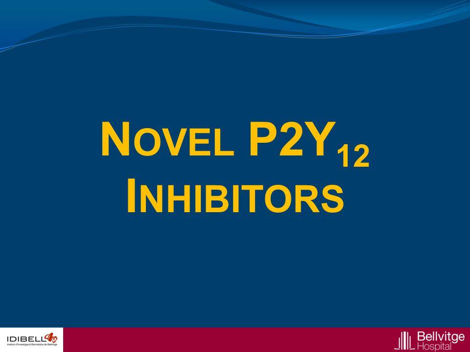 Novel P2Y12 Inhibitors