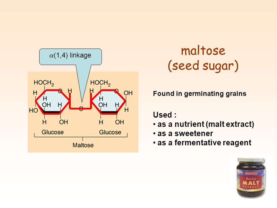 maltose (seed sugar) Used : as a nutrient (malt extract)