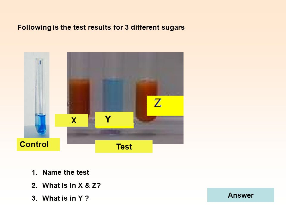 Y X Control Test Following is the test results for 3 different sugars