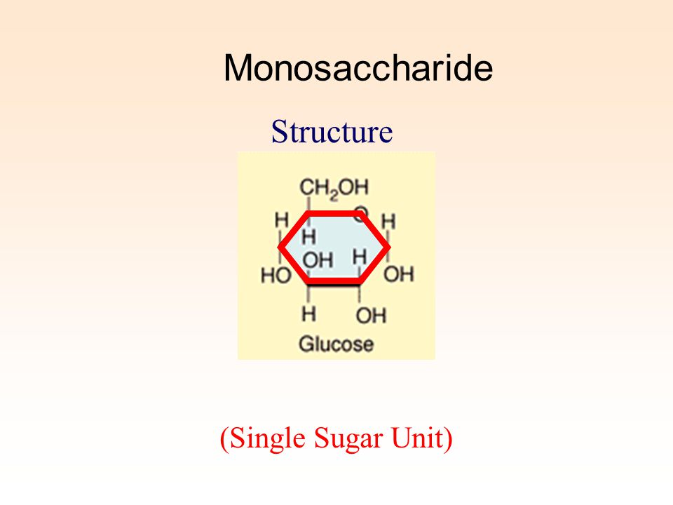 Monosaccharide Structure (Single Sugar Unit)