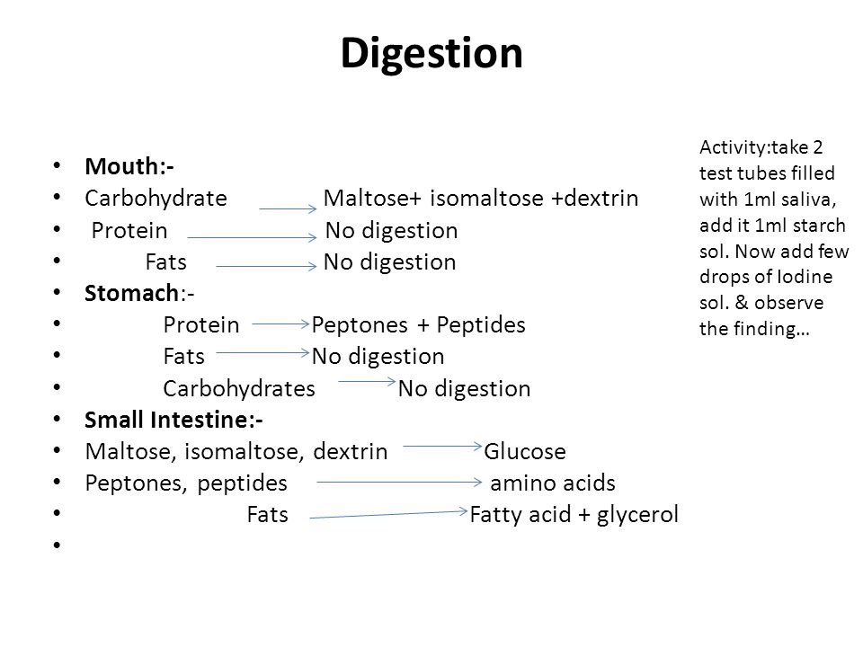Digestion Mouth:- Carbohydrate Maltose+ isomaltose +dextrin