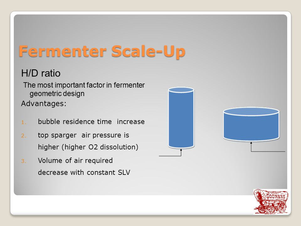 Fermenter Scale-Up H/D ratio