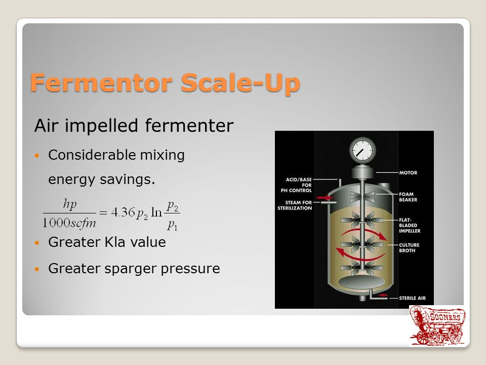 Fermentor Scale-Up Air impelled fermenter