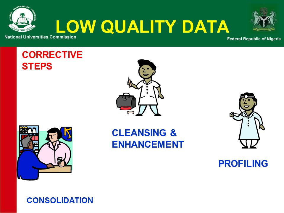 LOW QUALITY DATA CORRECTIVE STEPS CLEANSING & ENHANCEMENT PROFILING