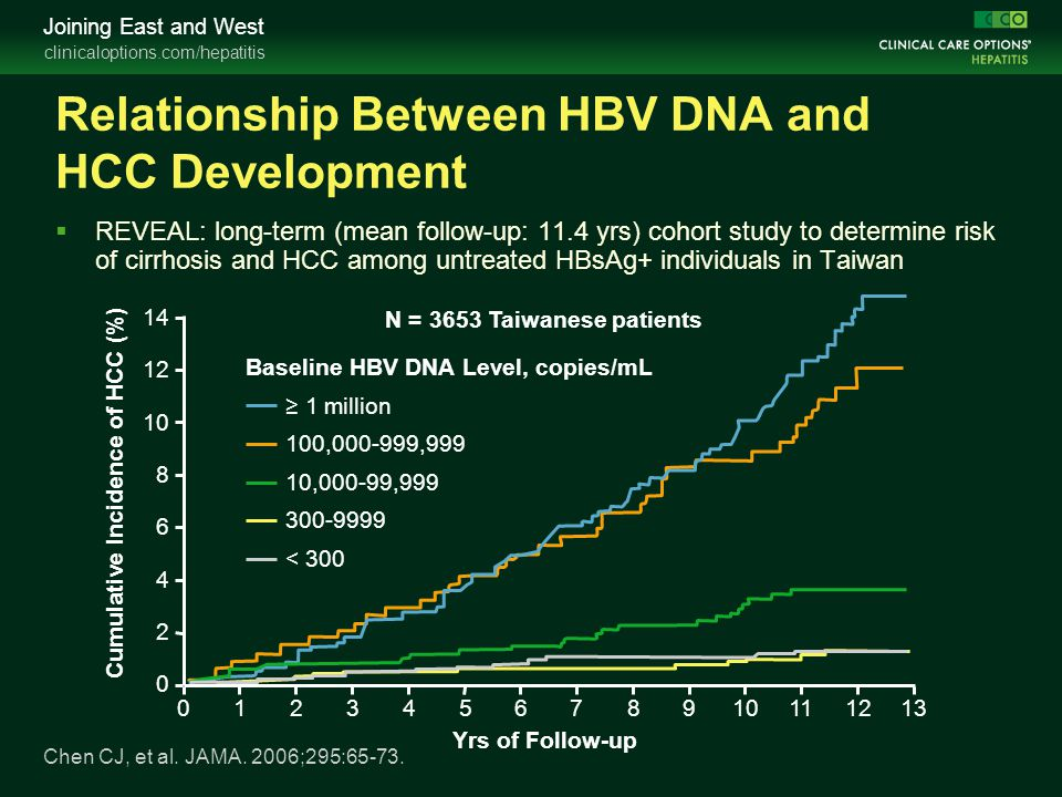 Relationship Between HBV DNA and HCC Development