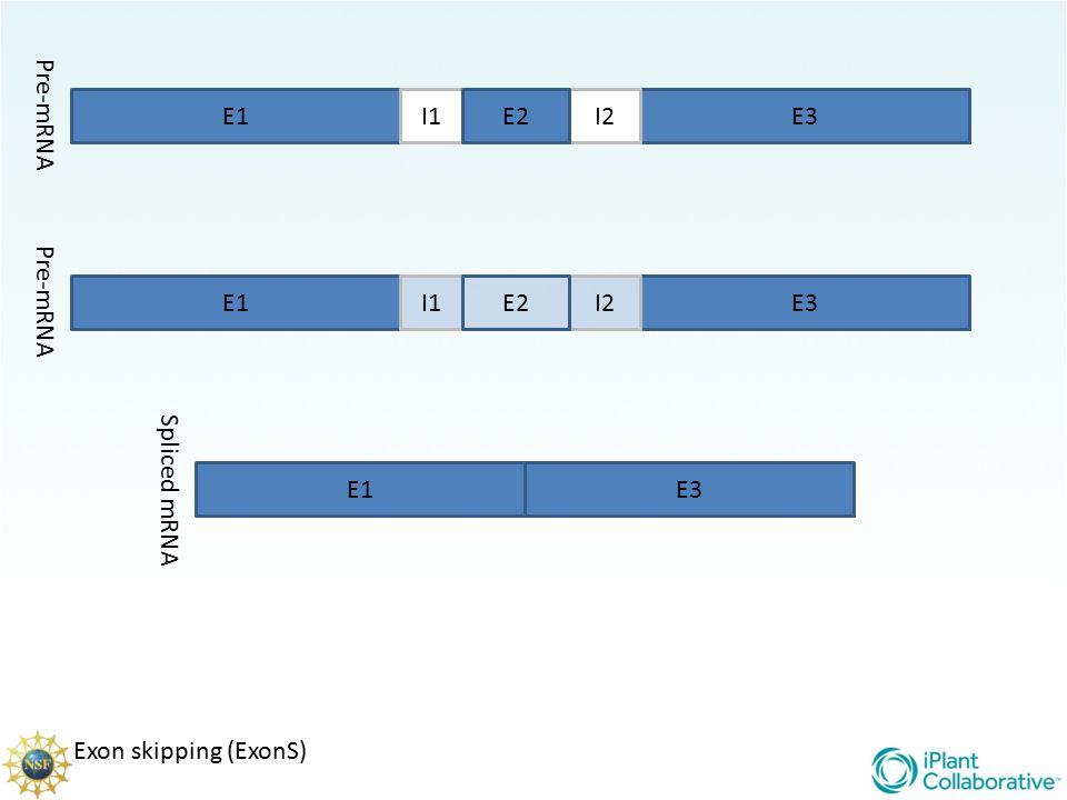 Pre-mRNA E1 I1 E2 I2 E3 Pre-mRNA E1 I1 E2 I2 E3 Spliced mRNA E1 E3 Exon skipping (ExonS)