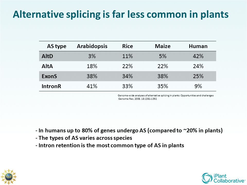 Alternative splicing is far less common in plants