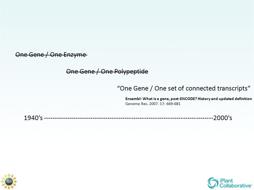 One Gene / One Polypeptide