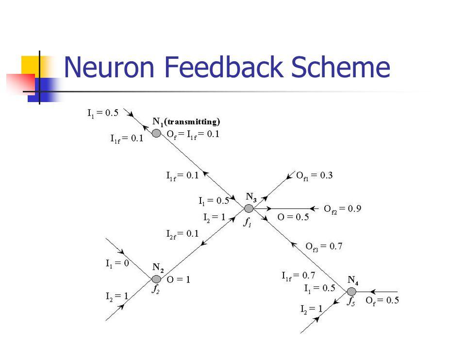 Neuron Feedback Scheme