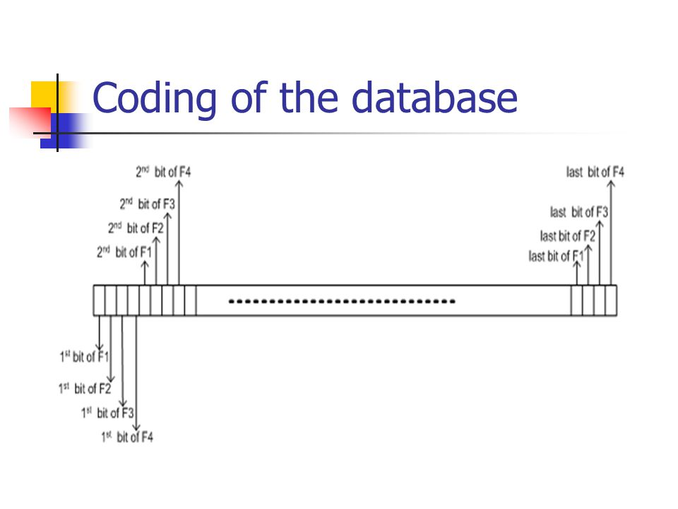 Coding of the database