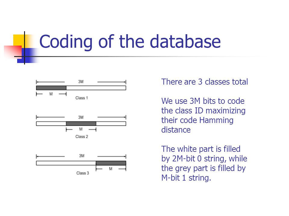 Coding of the database There are 3 classes total