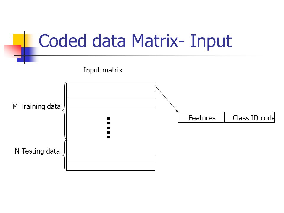 Coded data Matrix- Input