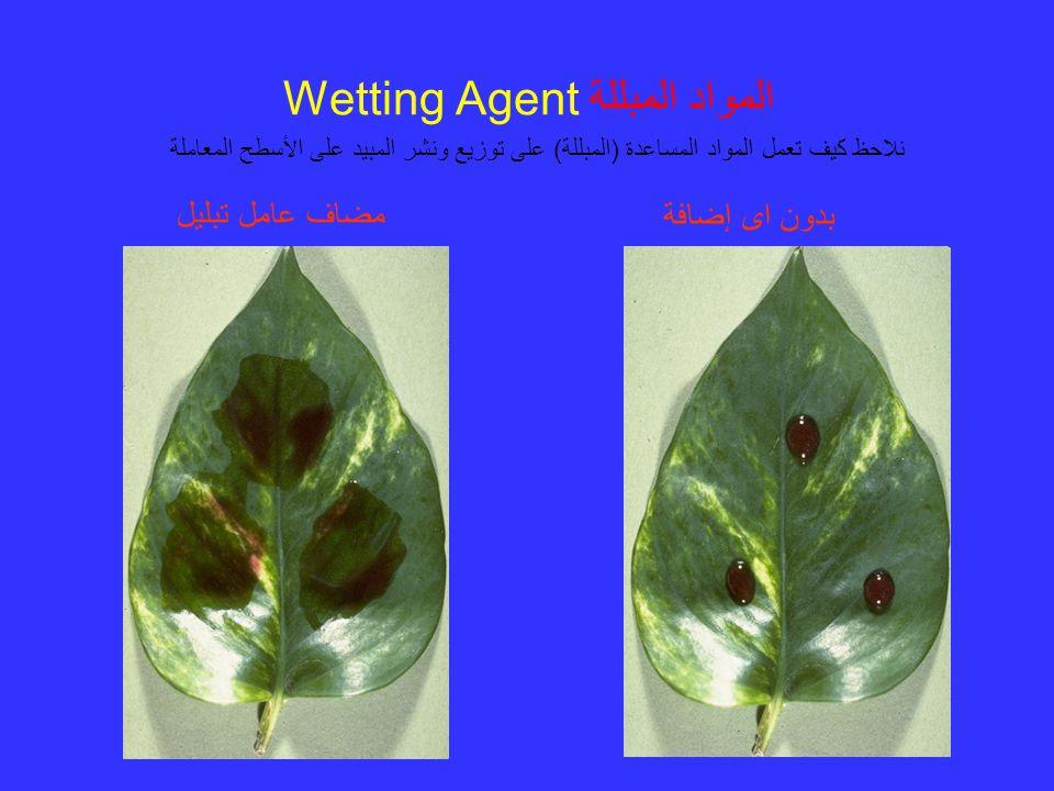المواد المبللة Wetting Agent