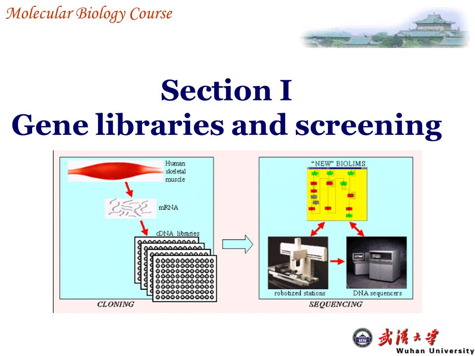 Section I Gene libraries and screening