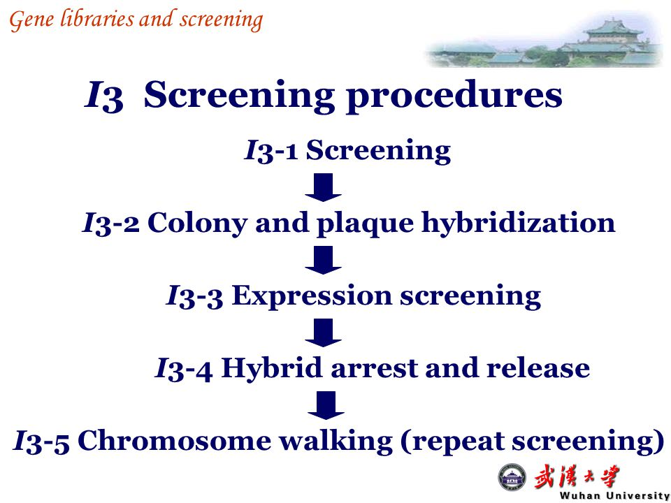 I3 Screening procedures