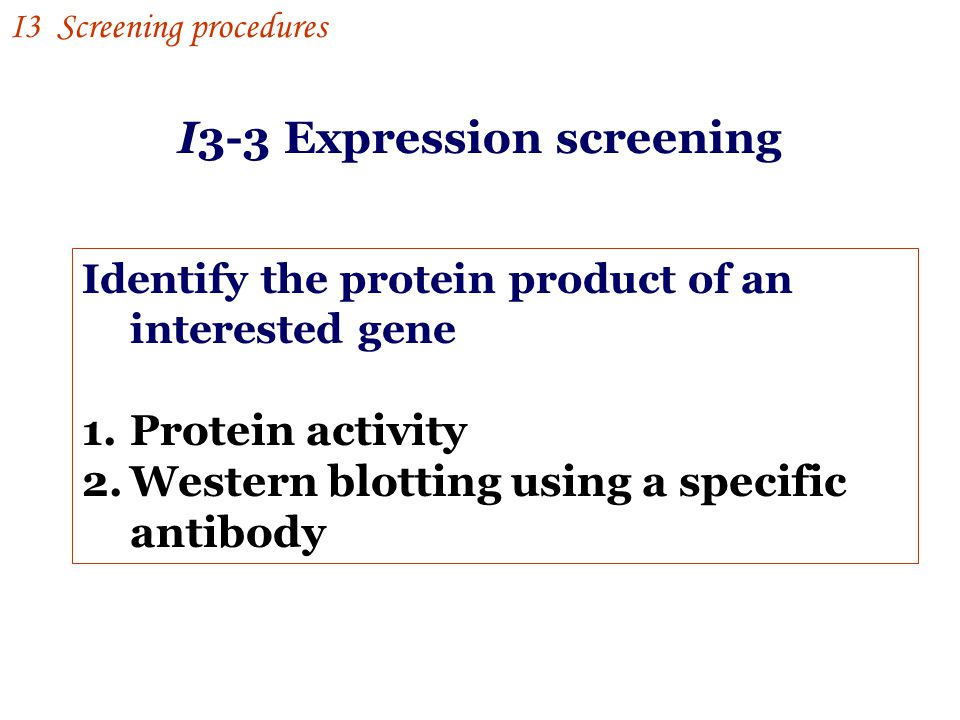 I3-3 Expression screening
