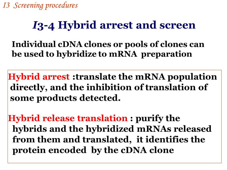 I3-4 Hybrid arrest and screen