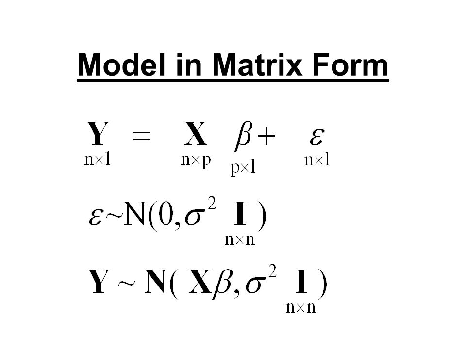 Model in Matrix Form