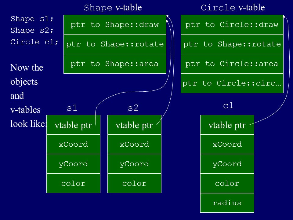 Shape v-table Circle v-table Now the objects and v-tables look like: