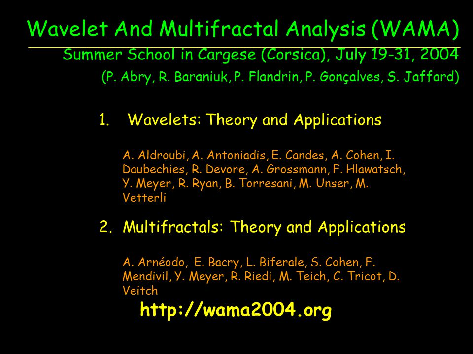 Wavelet And Multifractal Analysis (WAMA) Summer School in Cargese (Corsica), July 19-31, 2004 (P. Abry, R. Baraniuk, P. Flandrin, P. Gonçalves, S. Jaffard)